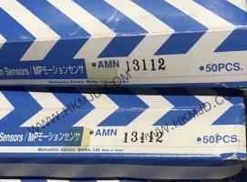AMN13112